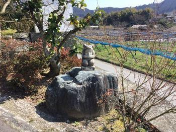 園清禅のカエル.jpg